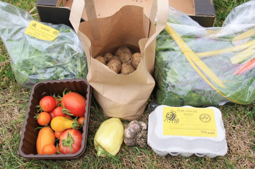 Small Veg Box – July